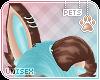 [Pets] Dexi | ears v2