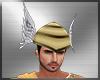 Hermes Helmet Hat