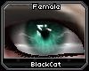 [BC] Drama | Teal F