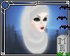 <MR> Long Hijab White