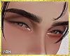 Natural eyebrows BLK V2.
