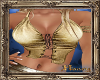 PHV Gold Laceup Top