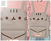 ☆. Pusheen Bag