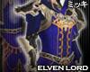 ! Elven Lord Coat II