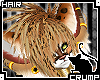 [C] Kittin v.4 Hair