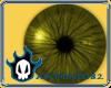 Yellow Eyes (F)