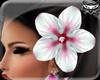 ! Hawaii flower L