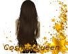 Very Long Brown Hair