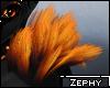 Z:: Heph Shoulder Tufts