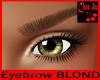 Eyebrow BLOND
