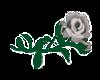 gray flower sticker