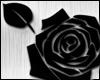 [A] flower Black
