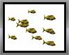 animated  fishe