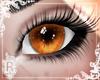ℛ| Pumpkin eyes