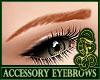 Eyebrows Auburn