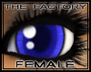 TF Anime Eyes Blue
