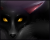 Skuzzi Fox