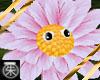 }T{ Dancing Flower Pink