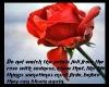 T Flowers Fade Remembera