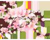 Cherry Blossom R
