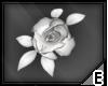 [E] White hair rose