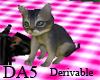 (A) Pet Kitten
