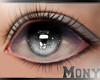 Eyes Grey Perfect 05