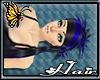 (BFD) Sachiko DeadSea