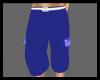 (DP)Blue Baggy Cargos