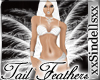 *ShowGirl* Tail Feathers