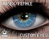 mm. NissiDark Custom