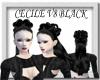 [FCS] Cecile V8 Black