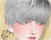 Silver Gray Cas Hair