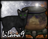*LL* Black cat/Cauldron