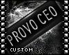 Sinz   Provo CEO Tag