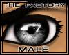 TF Lustrous Eyes Black