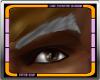 Manly Grey Eyebrows