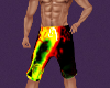 Raggae swim trunks