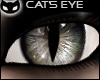 [SIN] Cat's Eye - Grey