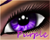 Purple Eyes [F]