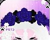 [Pets] Kes | rose crown