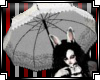 N*LolitaWhiteUmbrella