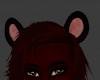 Crimson Lion Ears