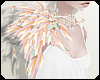 🌿 Shoudler Feathers
