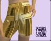 Gold Bar Shorts