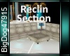 [BD]ReclinSection
