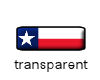 Texas flag mini button