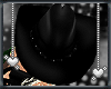 [SWA]Cowgirl-UP Hat