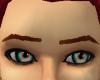 ~Auburn groomed brows