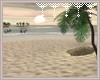 !V Beach